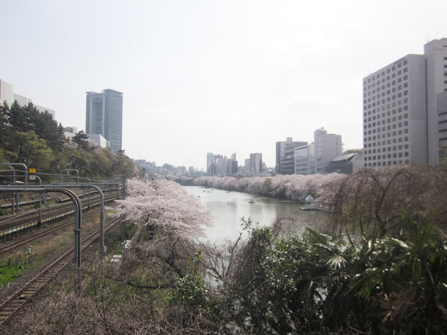 飯田橋駅のエリア情報4