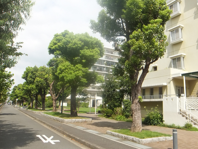 日吉本町駅のエリア情報4