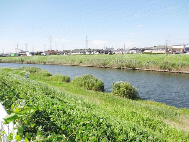 南鳩ヶ谷駅のエリア情報7