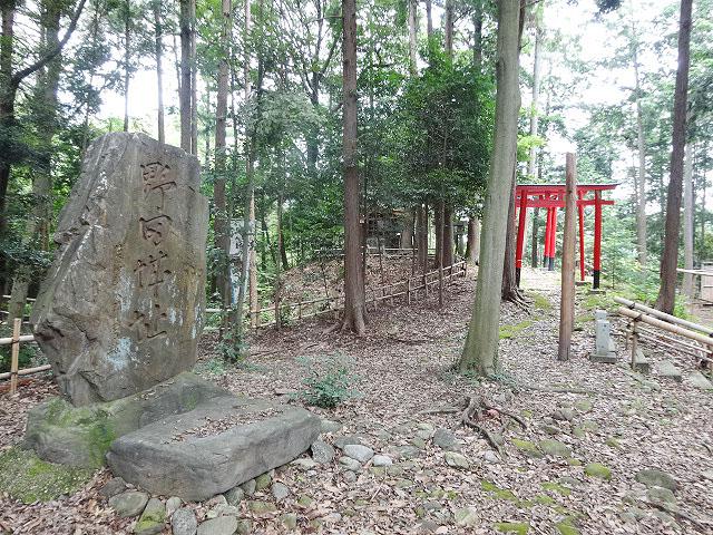 野田城駅のエリア情報9