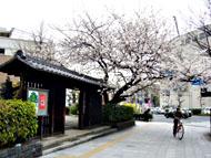 新栄町駅のエリア情報5
