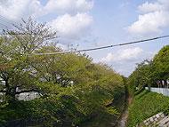 志賀本通駅のエリア情報6