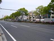 神宮西駅のエリア情報4
