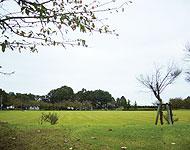 名張駅のエリア情報5