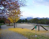 松尾大社駅のエリア情報5