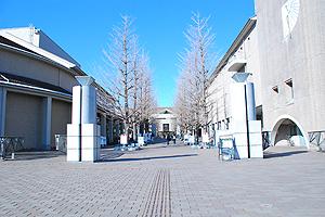 東京都立大学 南大沢キャンパス写真