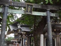 東京大学 本郷キャンパス写真6