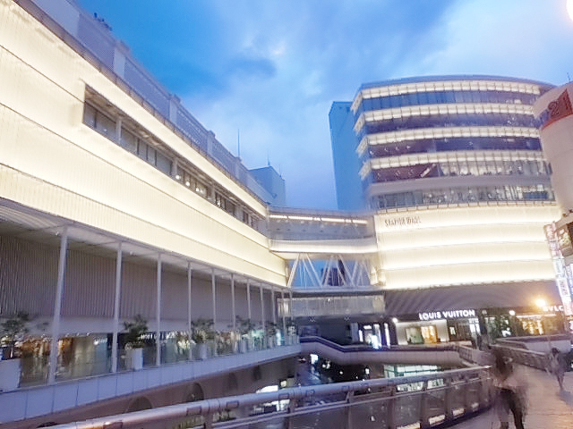 江戸川大学 写真3
