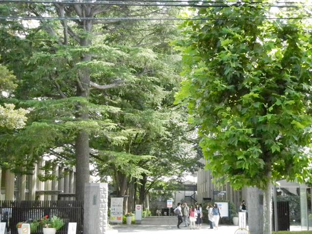 武蔵大学 写真