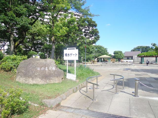 東京聖栄大学 写真3
