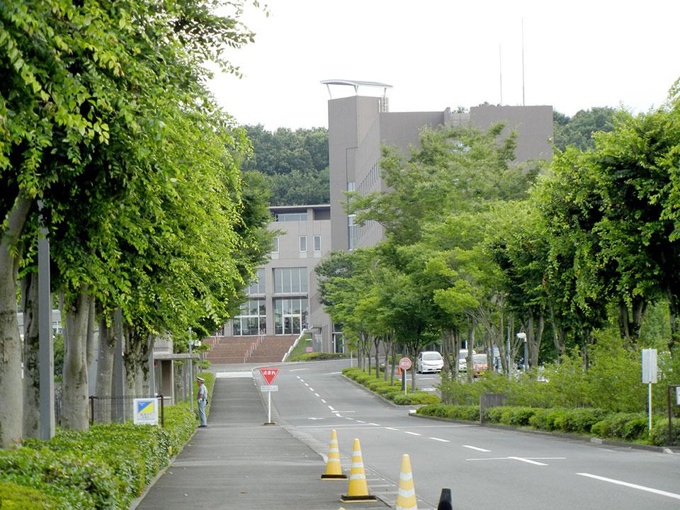 埼玉女子短期大学 写真