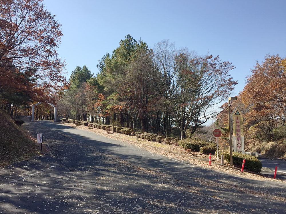 山村学園短期大学 写真